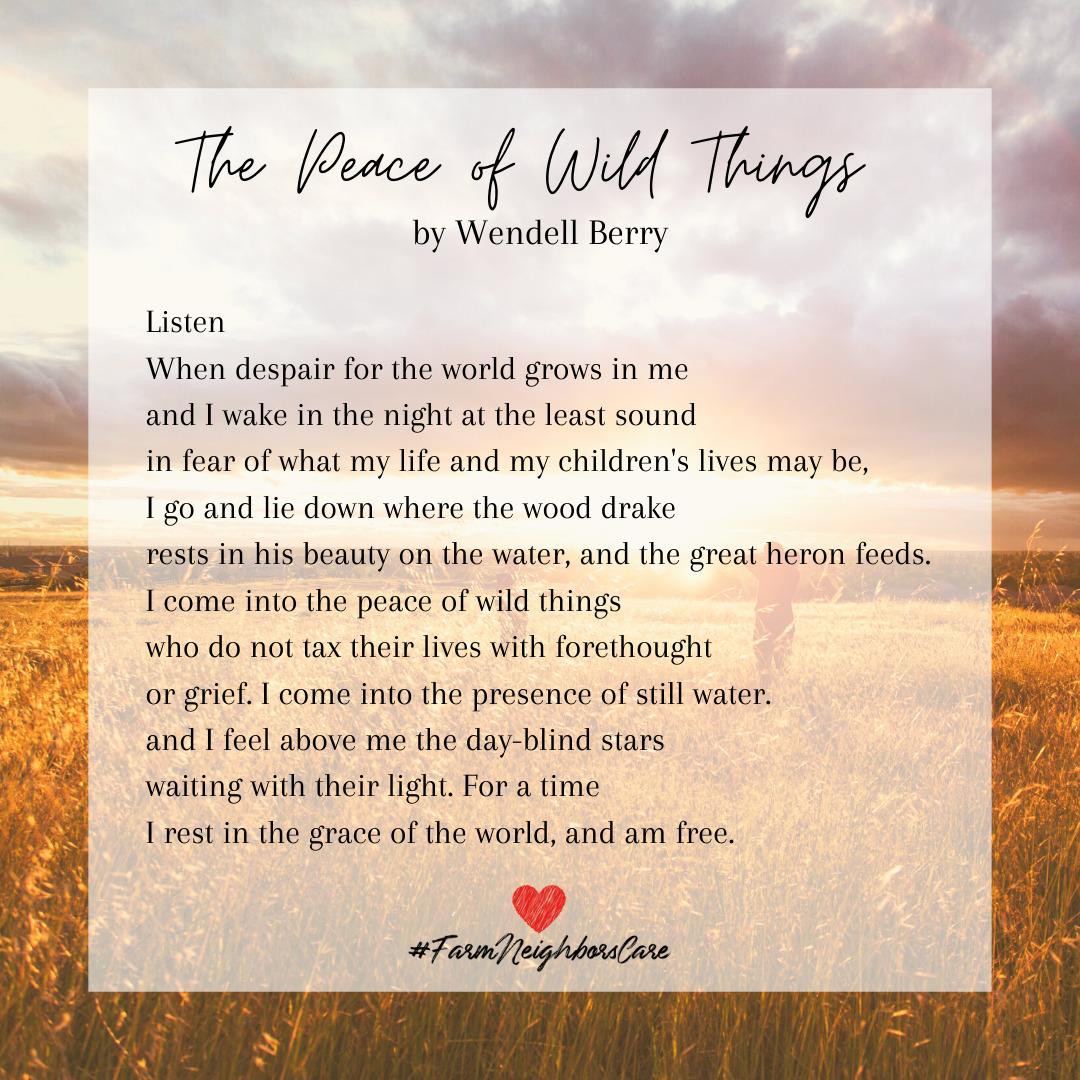 Wendell-Berry-Poem-1