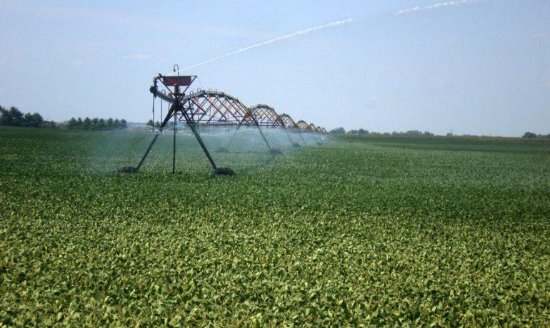 Wisconsin's Water Woes:  Legislature Must Address High Capacity Wells