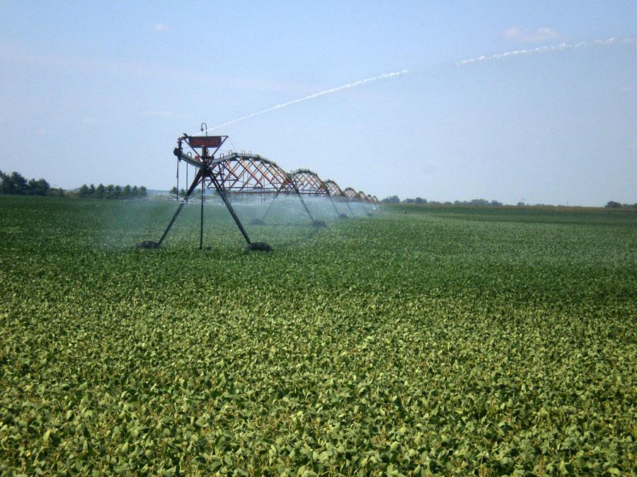 OLYMPUS DIGITAL CAMERA - irrigation