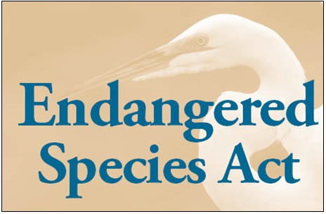 Poll Shows Broad Support for Endangered Species Act Reform