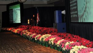annual-meeting-poinsettias-stage