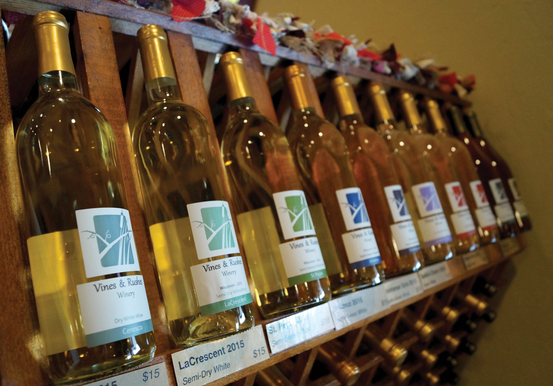 Vines and Rushes - Row of wine bottles on shelf
