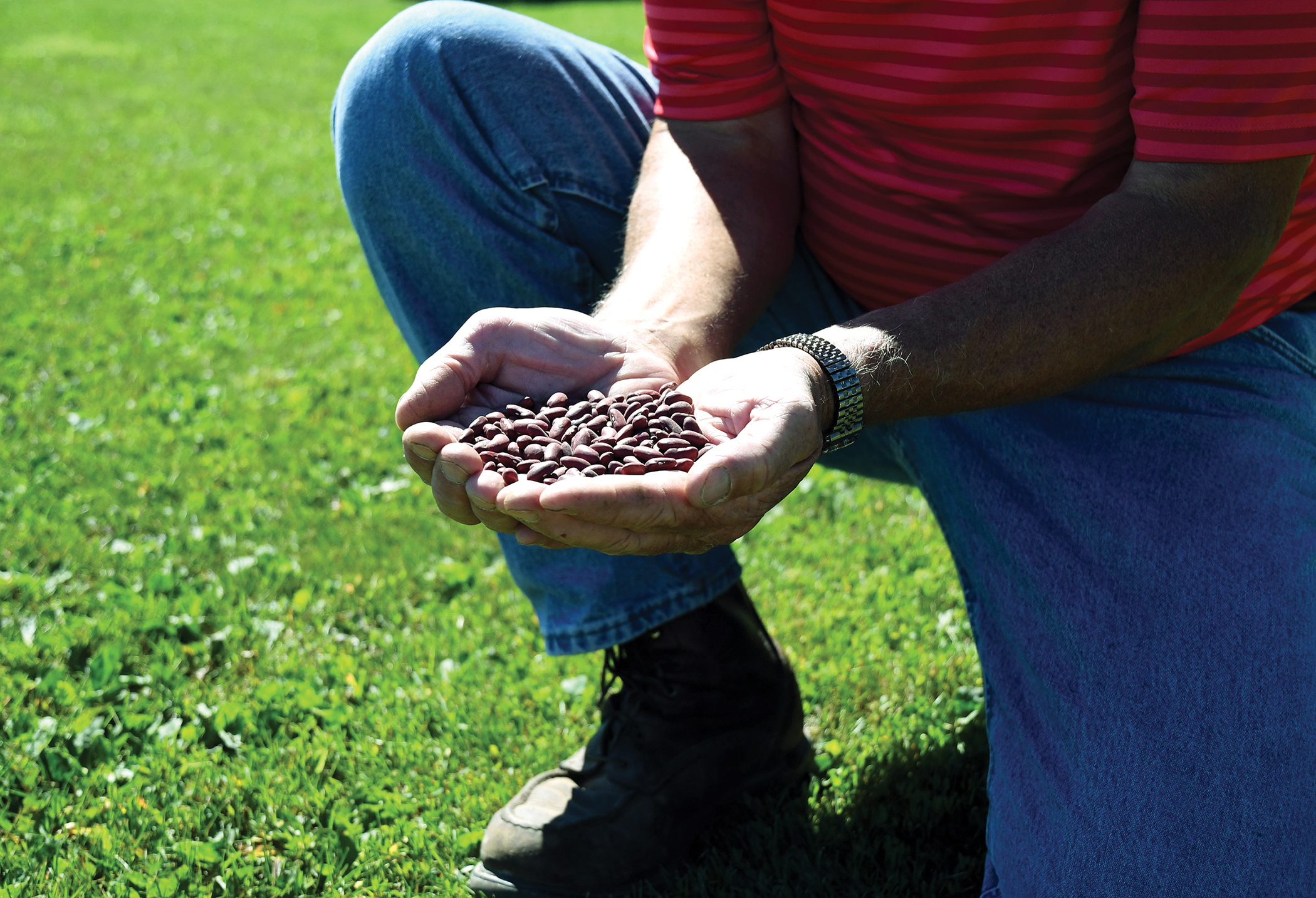 Meet Dale And Cindy Quilling Wisconsin Farm Bureau Federation