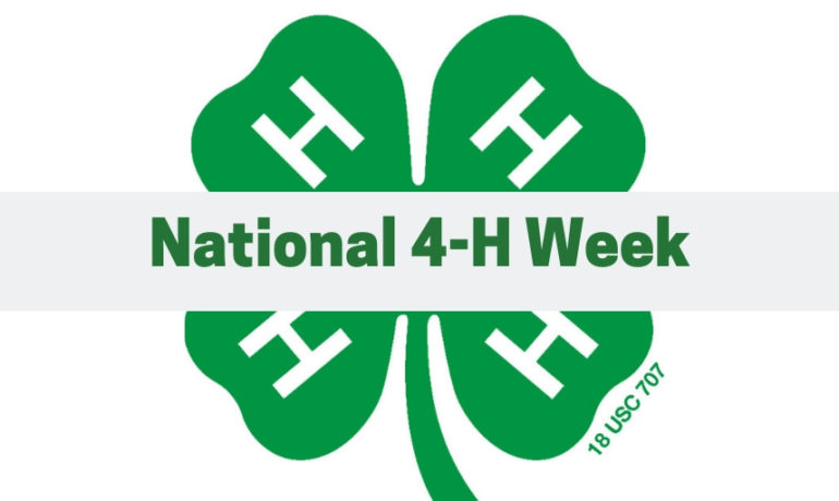 Celebrate National 4-H Week